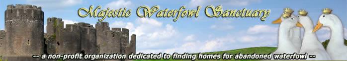 Majestic Waterfowl Sanctuary